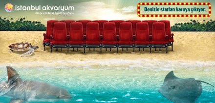ISTANBUL AKVARYUM-STARS OF THE SEA